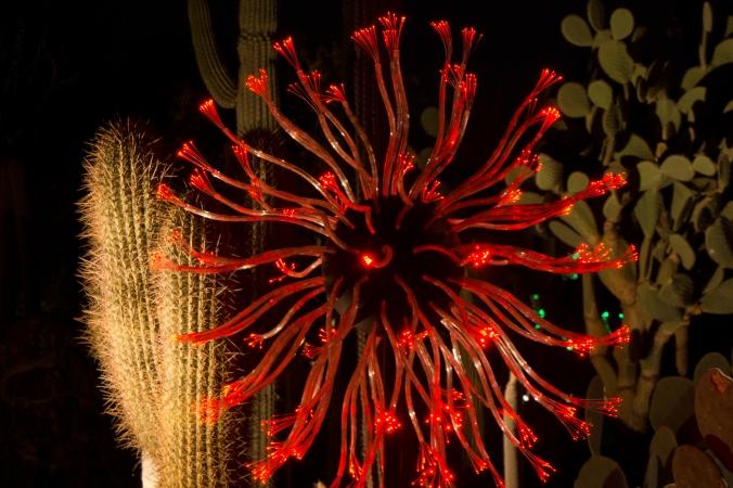 Light flower in red
