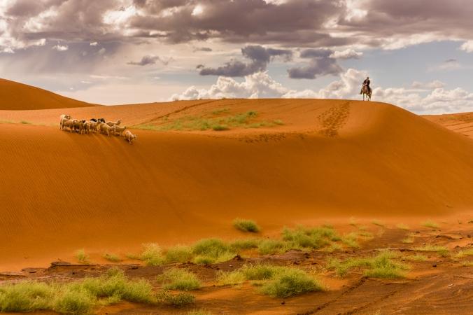 sand-dunes-0066
